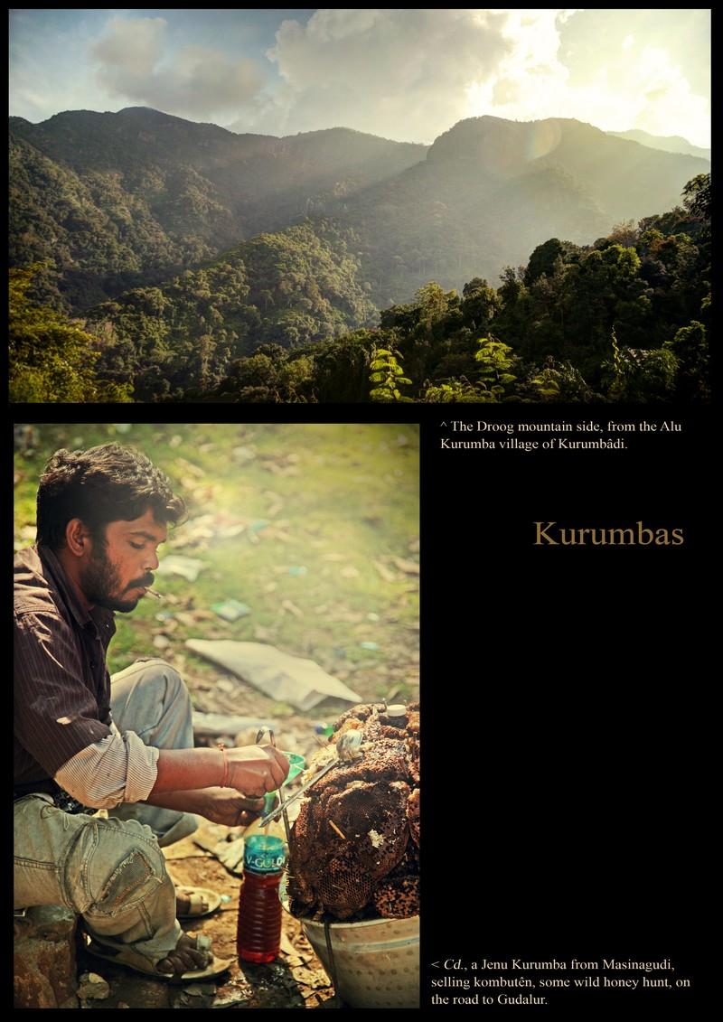 View on the Kurumba country (Droog). A Jenu Kurumba filtering his honey hunt.
